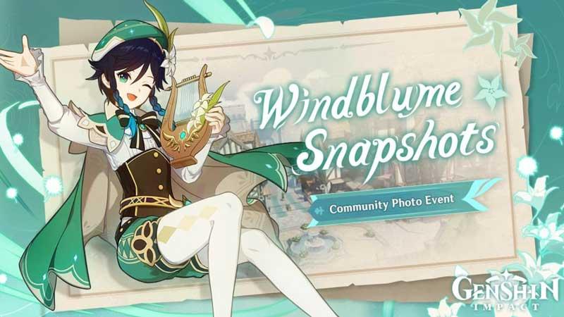 Windblume Snapshots in Genshin Impact