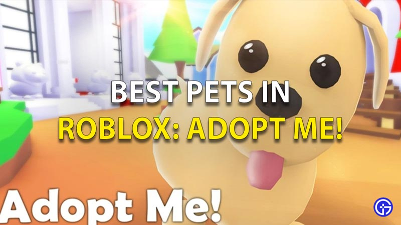 Best-Pets-In-Roblox-Adopt-Me