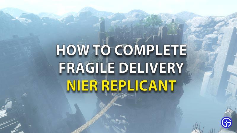 Delivery Nier Replicant
