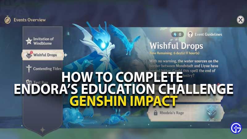 Endora Education Challenge Guide