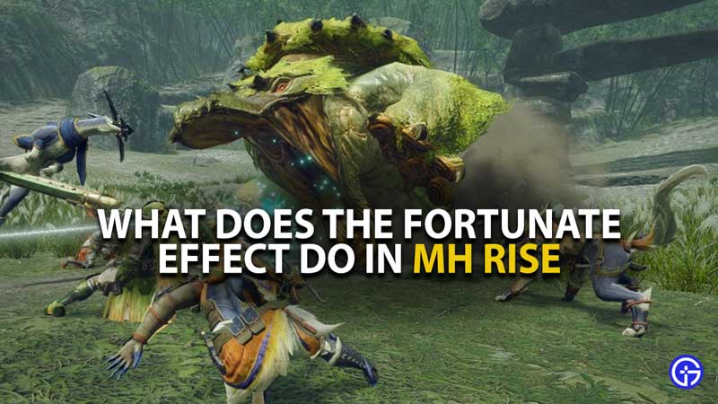Fortunate Effect MH Rise Guide