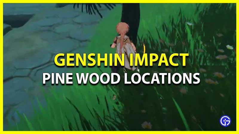 Genshin Impact Pine Wood Location