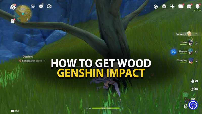 Genshin Impact Wood Guide