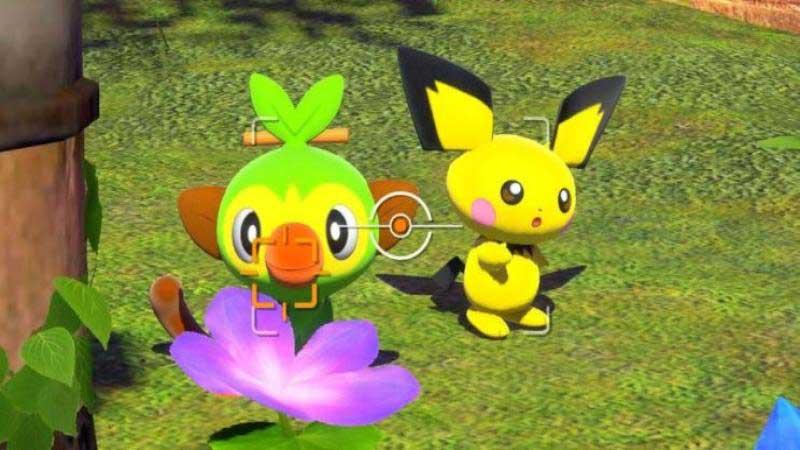 Pokemon Snap Multiplayer
