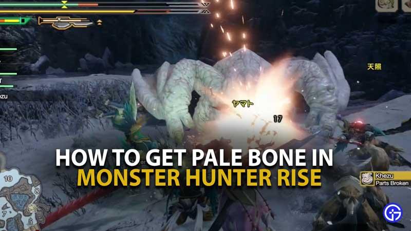 MH Rise Pale Bone Guide