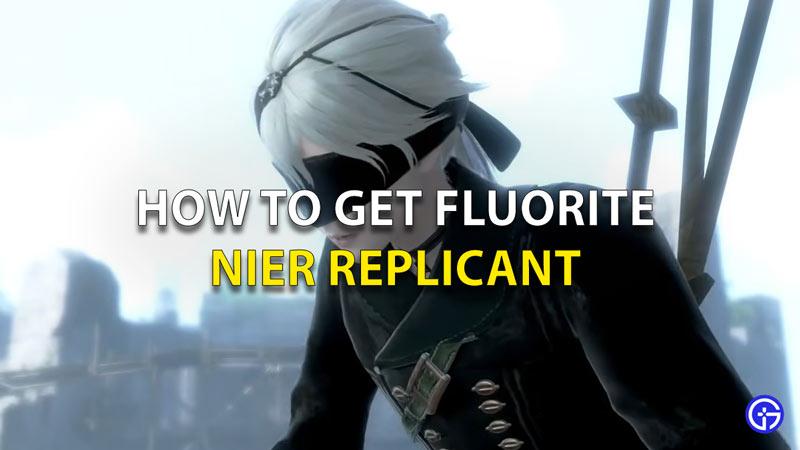 Nier Replicant Fluorite Location