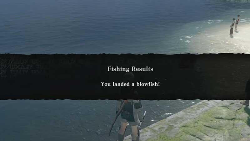 nier replicant blowfish location spot