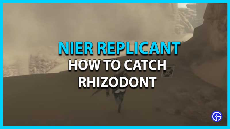 Nier Replicant Rhizodont Location