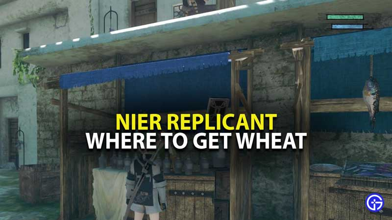 Nier Replicant Wheat Guide