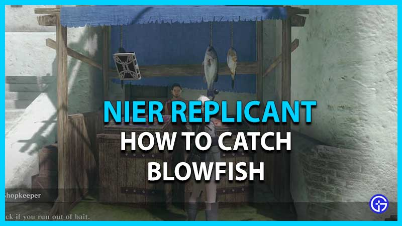 How to Catch Blowfish in Nier Replicant