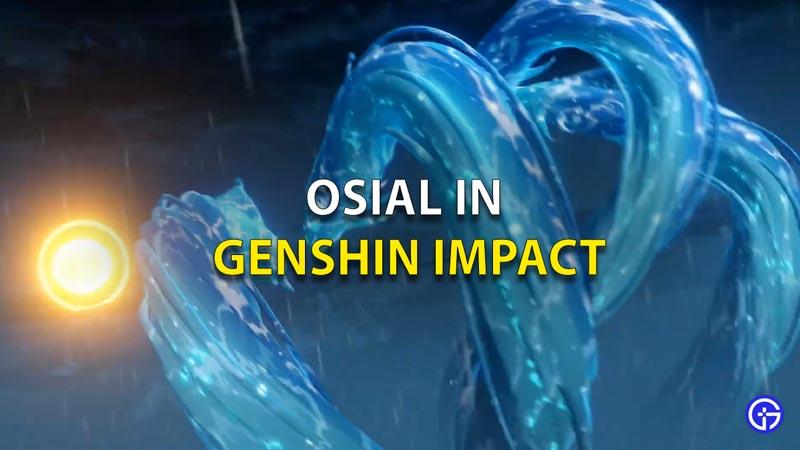 Osial In Genshin Impact