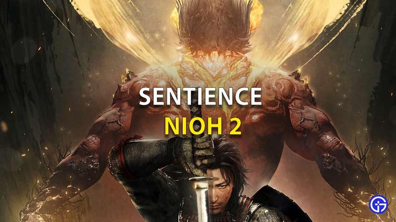 Sentience-Nioh-2