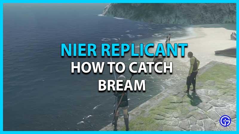 Where to Catch Bream in Nier Replicant