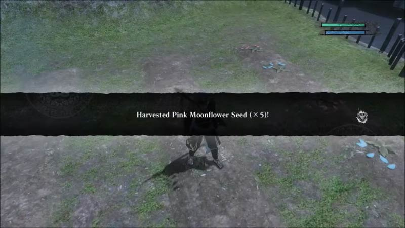 How To Get Pink Moonflower Seeds In Nier Replicant