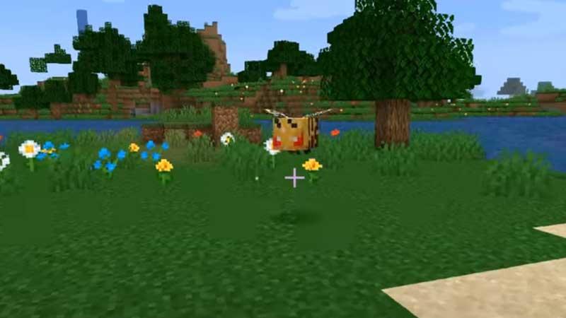 Honeycomb Farming Minecraft