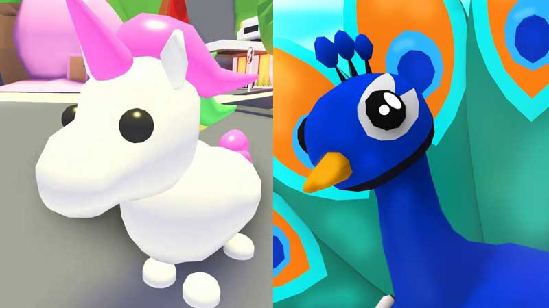 list of top pets roblox adopt me
