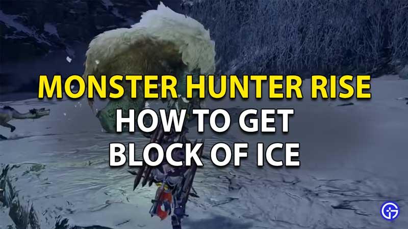 Monster Hunter Rise Block Of Ice