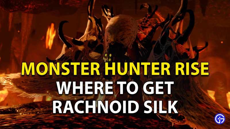 Monster Hunter Rise Rachnoid Silk