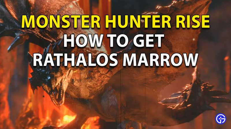 Monster Hunter Rise Rathalos Marrow