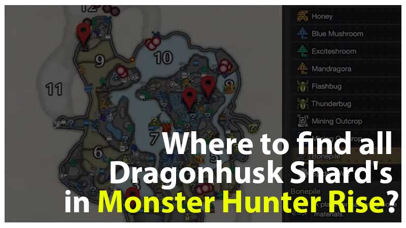 MHR Dragon Shards Location