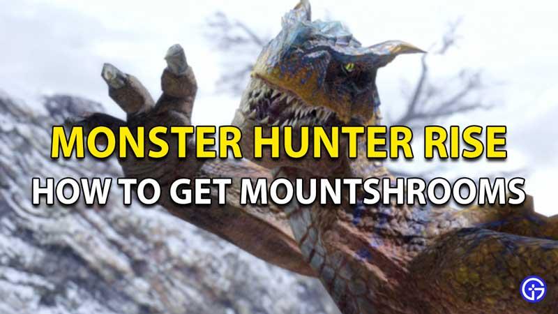 Monster Hunter Rise Mountshroom