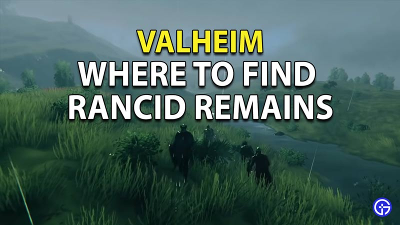 Valheim Where To Find Rancid Remains