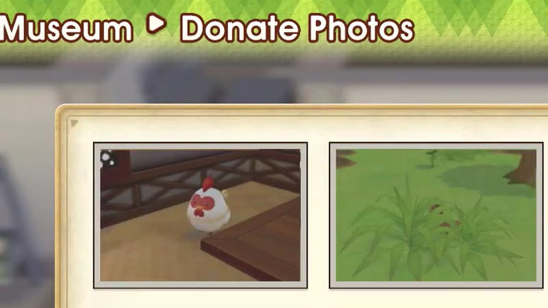 How to take pictures in SoS Pioneers of Olive Town