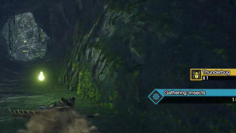 How to get Thunderbugs in Monster Hunter Rise