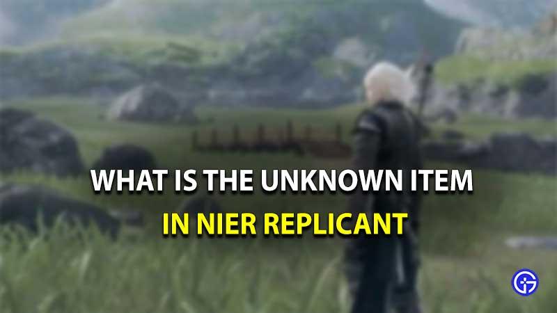 Nier Replicant Unknown Item