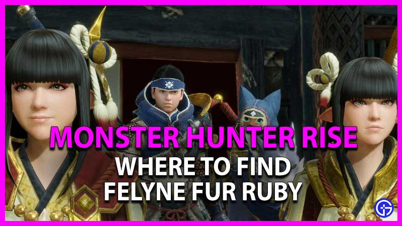 Where To Find Felyne Fur Ruby In Monster Hunter Rise