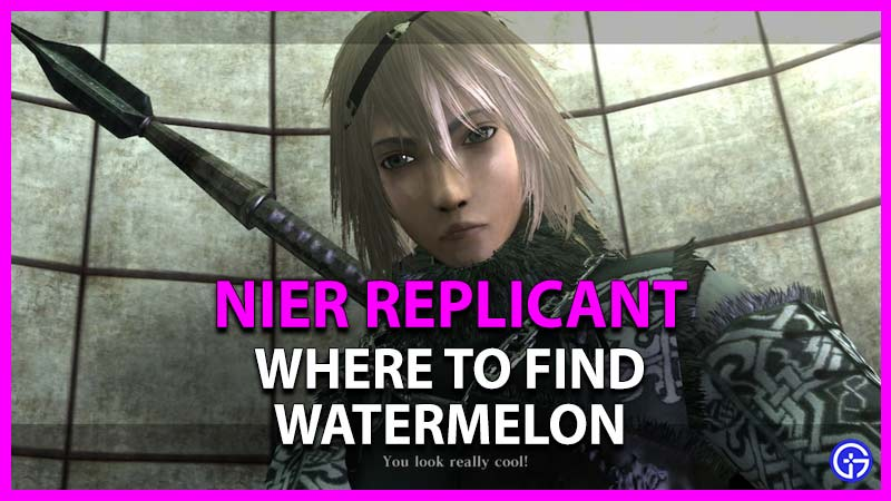 where to find watermelon in nier replicant