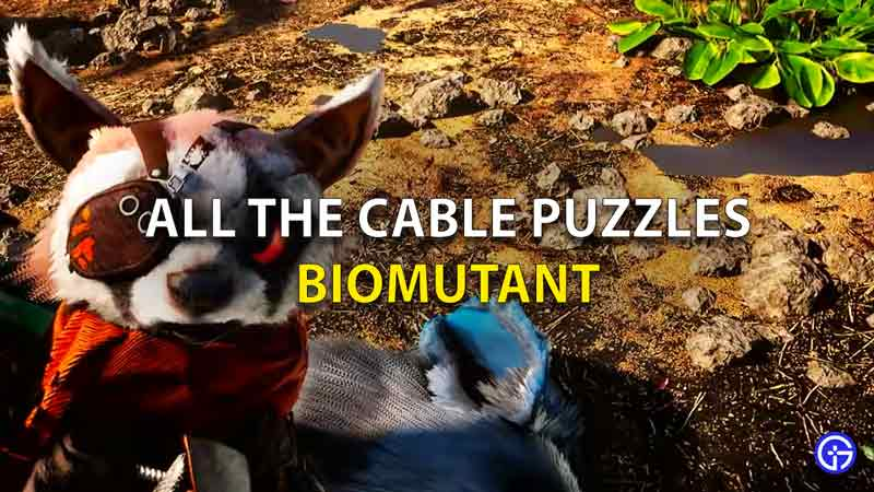 All The Cable Puzzles Biobutant