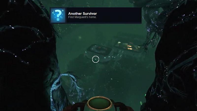 Another Survivor