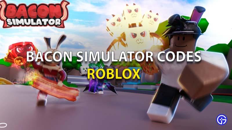 Bacon Simulator Codes