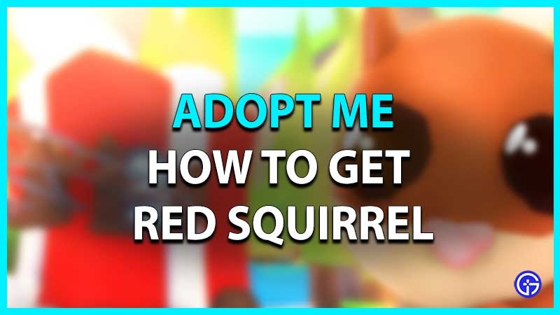Roblox Adopt Me Red Squirrel How To Get