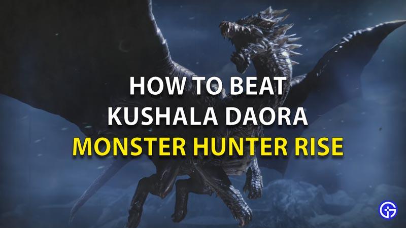 Beat Kushala Daora MH Rise