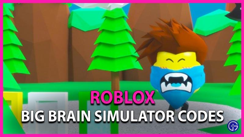 Roblox Big Brain Simulator Codes