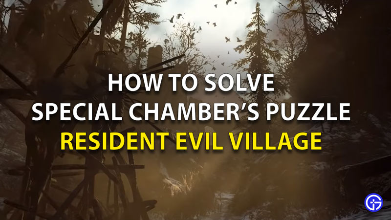 Special Chambers Puzzle RE8