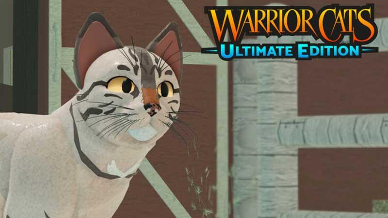 Warrior Cats Codes
