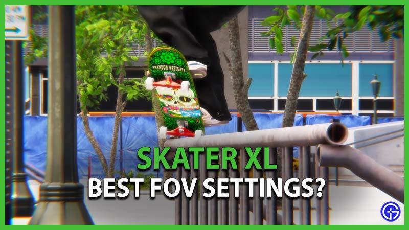 Best FOV Settings in Skater XL