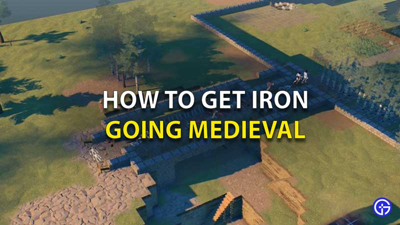 How To Get Iron