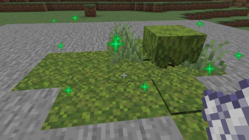 Moss Block Uses