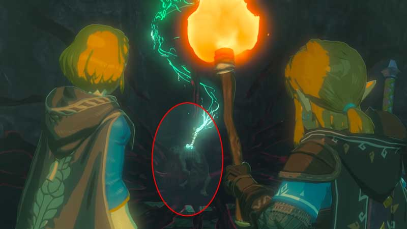 BOTW2 Leaked Screenshots