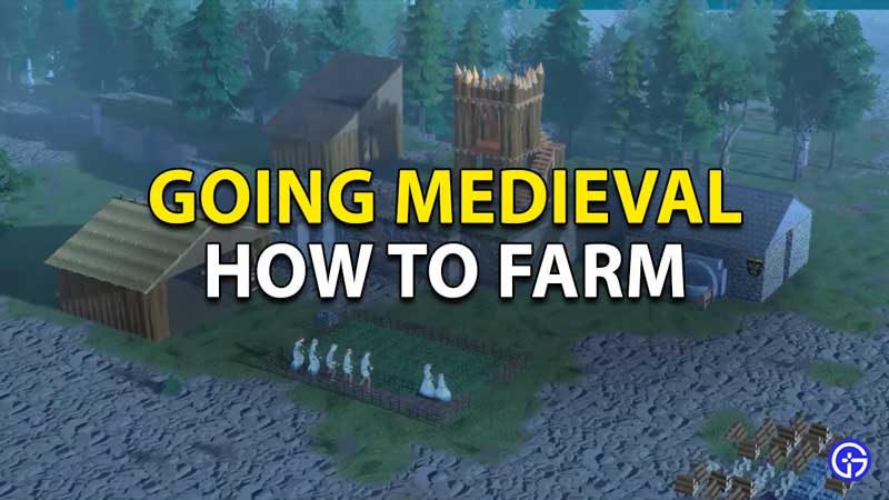 Going Medieval: How To Farm