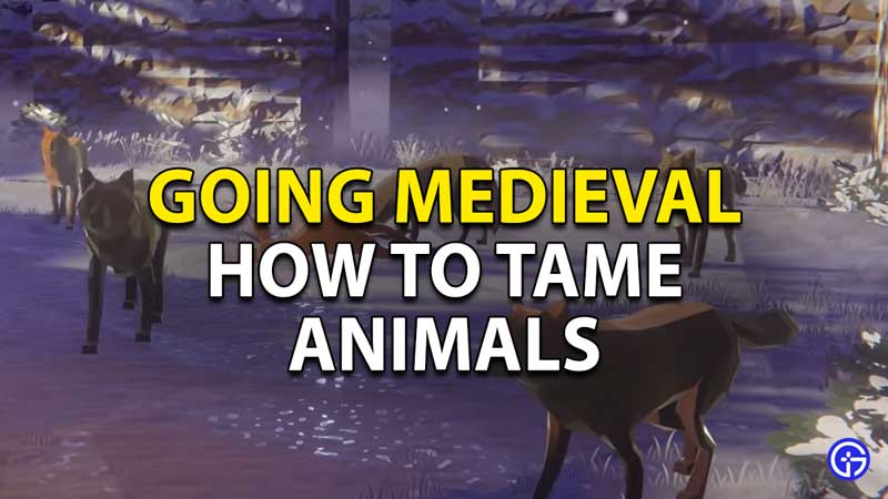 Going Medieval: How To Tame Animals