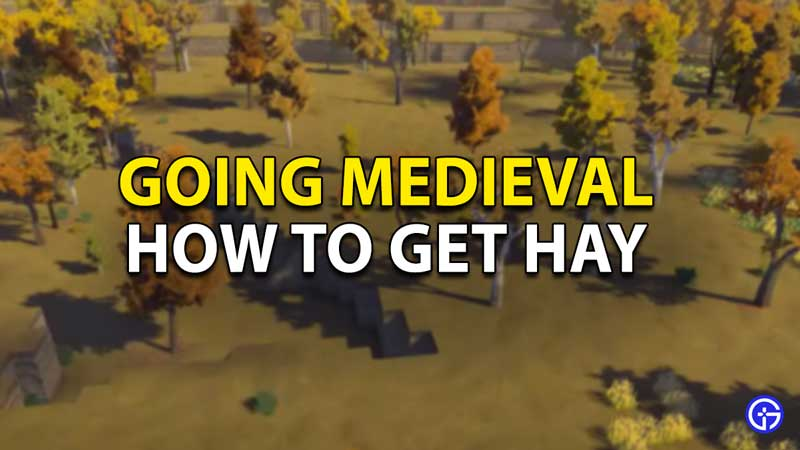 how to get hay in going medieval