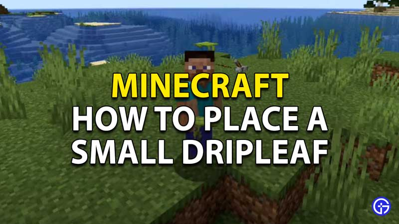 minecraft how to place a small dripleaf