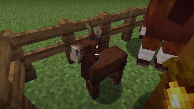 mule minecraft