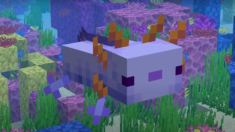 tamable animals in minecraft