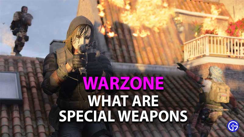 what are special weapons in warzone